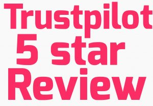 I will provide 5 trustpilot permanent review