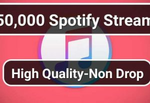 Get 50.000 HQ Real Spotify Plays Or Streams