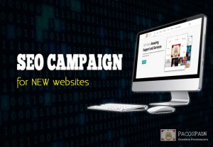 SEO Campaign for NEW Websites – 1st Page Pusher