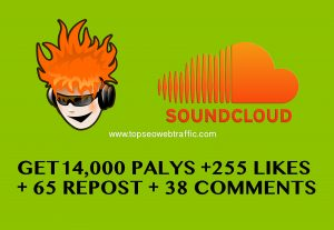 I WILL PROVIDE 14,000 PALYS+ 255 LIKES + 65 REPOST + 38 COMMENTS