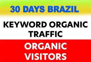 Provide Website Traffic | Organic Web Traffic | 3 Min Visit Time