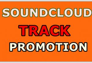 I will send you 1K followers OR 500 likes OR 500 repost OR 200K soundcloud plays