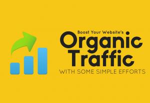 Provide 30 days search keyword target web traffic