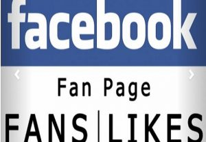 I will provide 500 face book Fan Page Followers OR 200 Fan Page Likes (30 Days Refill Guaranted)