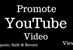 I'll Promote and Increase your YouTube Video Views 1,000+ For Lifetime Guarantee