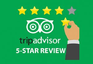 Provide 10 TripAdvisor Five Star Reviews For Your Website Restaurant