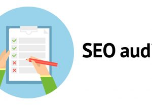 SEO Audit for all sorts of websites
