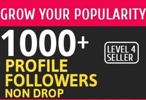 I Will give you Add 1000 High Quality Fast Profile Followers for $15