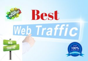 I will do real traffic your website