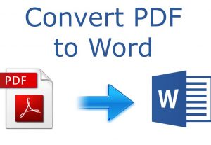 I will convert PDF to Microsoft word