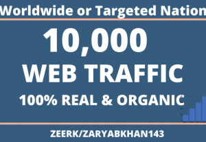 10000+ Real Traffic (Visitors) Worldwide or Country Targeted Traffic
