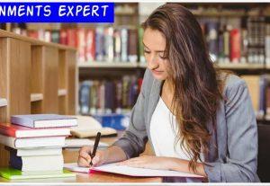 write original essays, literature and summary reviews