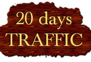 drive Unlimited AMAZON EBAY ETSY shopify visitors traffic for 20 days to your shop STORE