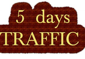 drive Unlimited AMAZON EBAY ETSY shopify visitors traffic for 5 days to your shop STORE