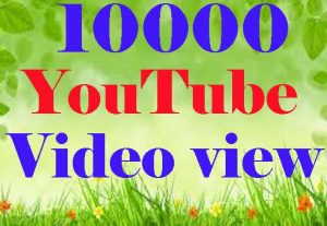 I will Give YouTube 10000 view Video Promotion By Real Users