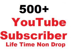 500+ YouTube Subscriber Give You