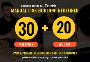 Mannually Best quality 30 Profile Backlinks + 20 edu/gov backlinks sky rocket Google