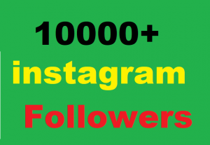 10000+ Instagram Followers Give You