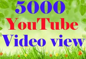 Organic 500+ Real YouTube video views Promotion