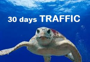 drive 30 days  unlimited AMAZON EBAY ETSY shopify visitors traffic hits to your shop STORE extras