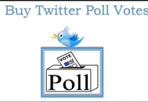 I will Provide 100+ Twitter Votes on Your Twitter Poll Safe Secure Guarantee