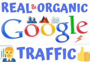Get 100% Real & Organic Google Traffic For Your Website or Blog