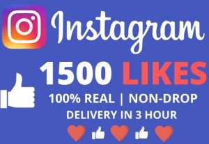 I Will Give You 1500+ Instagram Likes With Delivery In 3 Hour