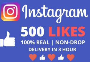 I Will Give You 500+ Instagram Likes With Delivery In 3 Hour