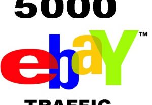 drive 5000 Quality SEO Traffic to EBAY ecommerce shop listing Product