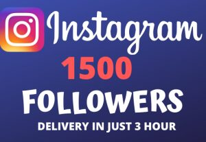 I Will Give You 1500+ Instagram Followers and Will Deliver In Just 3 Hour