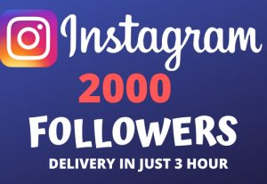I Will Give You 2000+ Instagram Followers and Will Deliver In Just 3 Hour