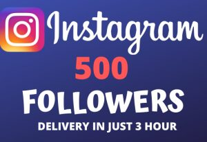 I Will Give You 500+ Instagram Followers and Will Deliver In Just 3 Hour