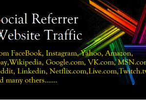 I will give 2000 (2K) Social Referrer Website Traffic – HQ Fast