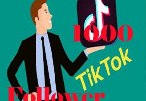 1000 + tik tok follower super fast dealivery