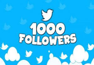 Get 1000 Twitter Followers Real & Active | Non- Drop | Fast Delivery | 30 days refill