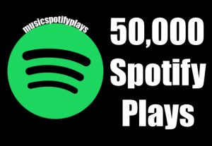 50,000 Real Spotify Plays Music Advertisement promotion