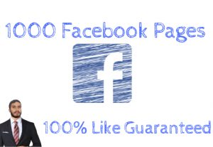 I will Give You 1000 Facebook Page Likes Guaranteed