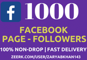 Get 1000 Instant Facebook Fan-Page Followers NoN-Drop Fast Delivery