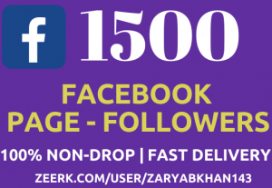 Get Instant 1500 Facebook Fan-Page Followers NoN-Drop Fast Delivery