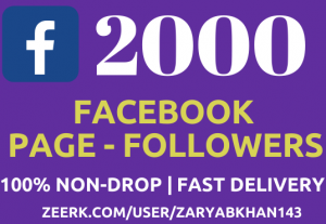 Get  2000 Instant Facebook Fan-Page Followers NoN-Drop Fast Delivery