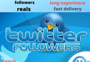 Add +300 TWITTER organic your niche targeted followers  from advertising campaigns to your account in less than 24h