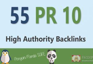 We will create 55+ PR10 Profile Backlinks