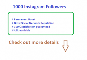 Do A Genuine 4000 Instagram Followers from High Quality Stable Accounts