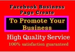 I will Create And Setup Facebook Business Page Or Fan Page