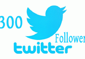 I will add real 300 twitter followers