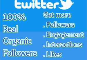 I will do organic twitter growth and promotion Manually