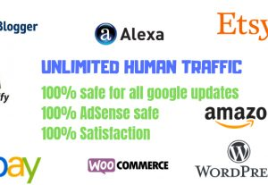 I Will Drive 12.000+ Real Traffic Within 30 Days / 400 Visits Daily