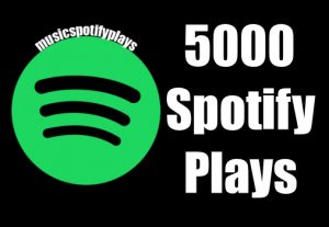 5,000 Real Safe HQ Spotify Streams Plays Music Advertisement Promotion