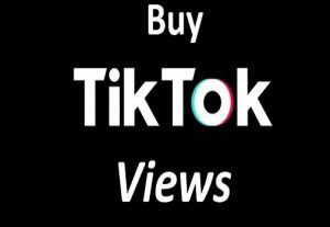 i will get you 1,000 tiktok video views