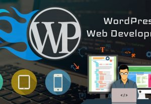 I will design an awesome WordPress Website or Blog
